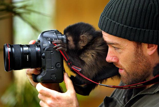 monkey-camera_1669480i