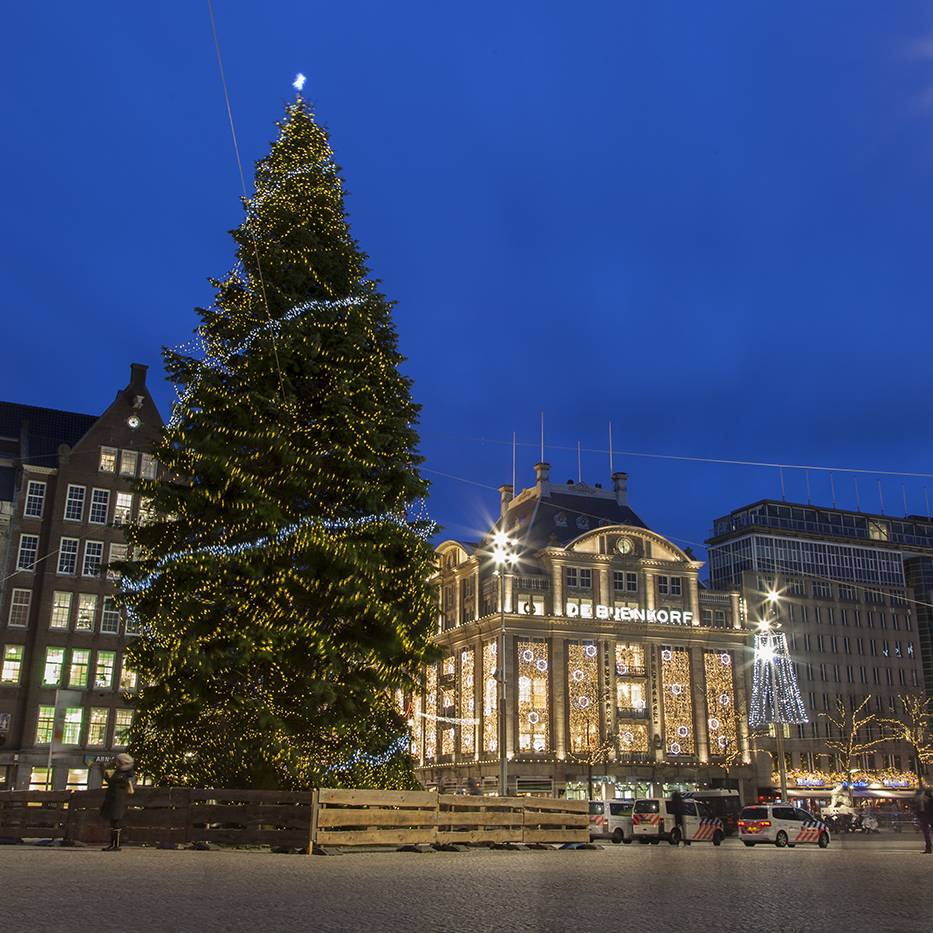 Amsterdam-Christmas-Tree-Dam Web-Crop